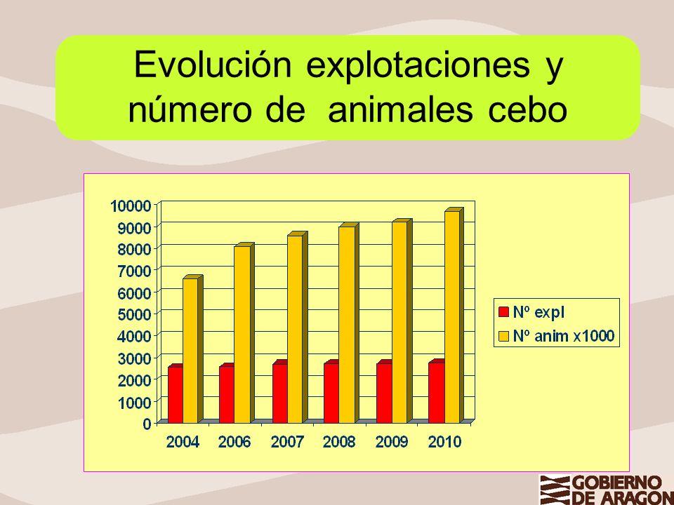 Evolución explotaciones y número de animales cebo