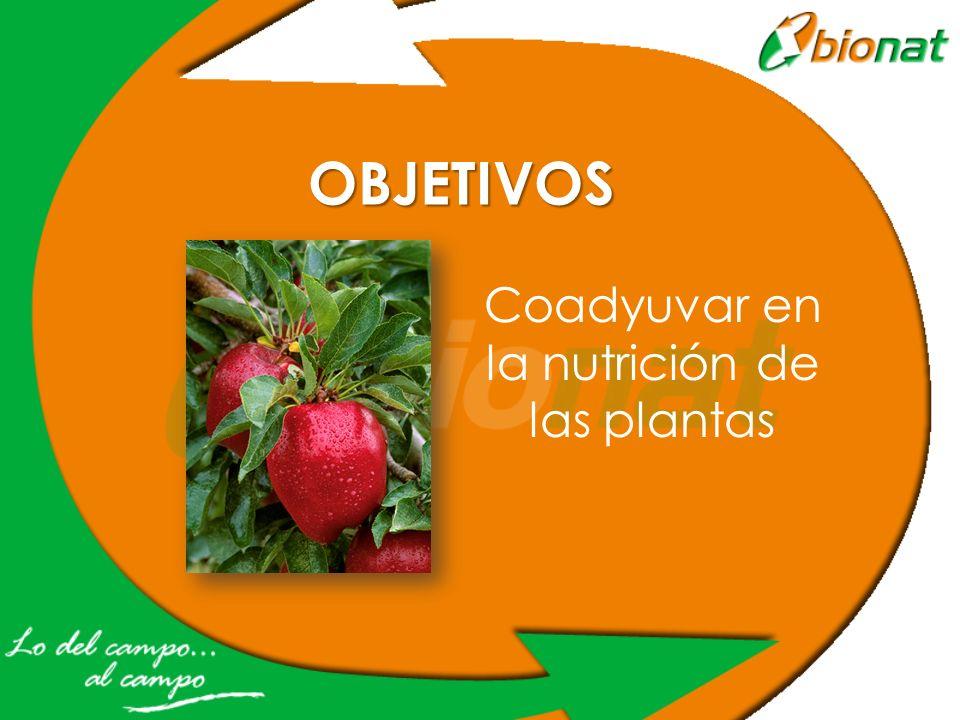 Coadyuvar en la nutrición de las plantas OBJETIVOS