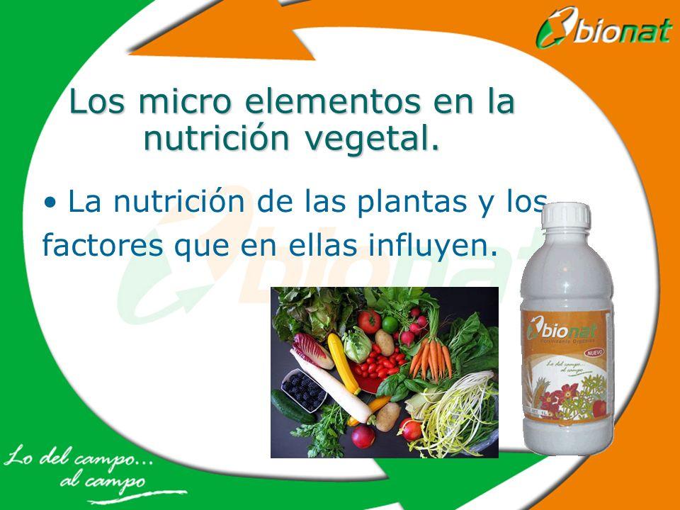 Los micro elementos en la nutrición vegetal. La nutrición de las plantas y los factores que en ellas influyen.
