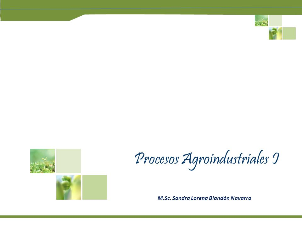 Procesos Agroindustriales I M.Sc. Sandra Lorena Blandón Navarro