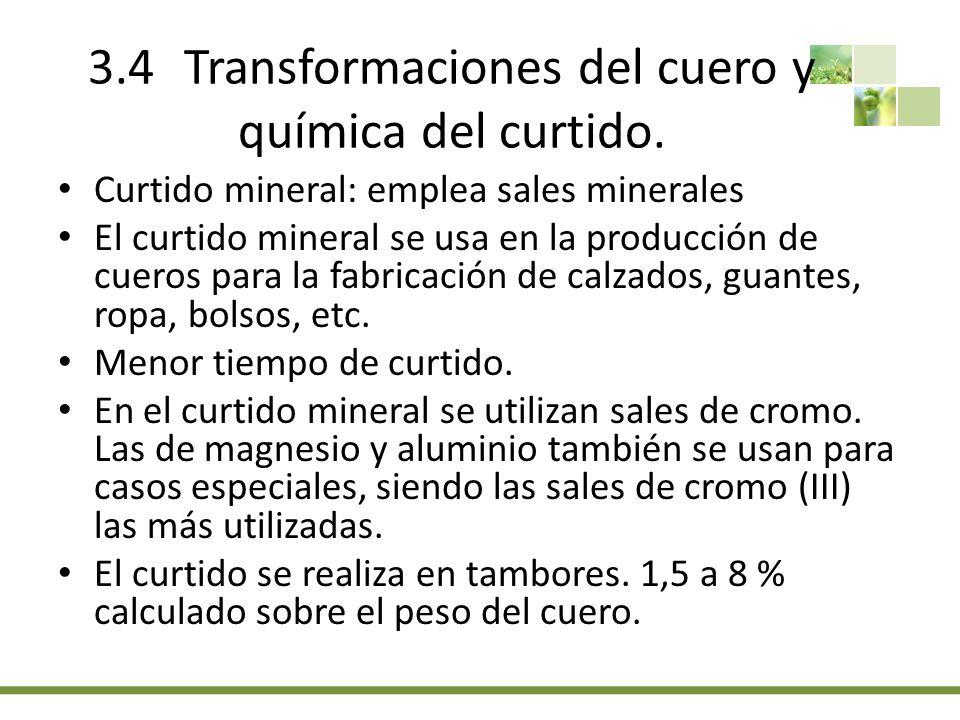 3.4Transformaciones del cuero y química del curtido.