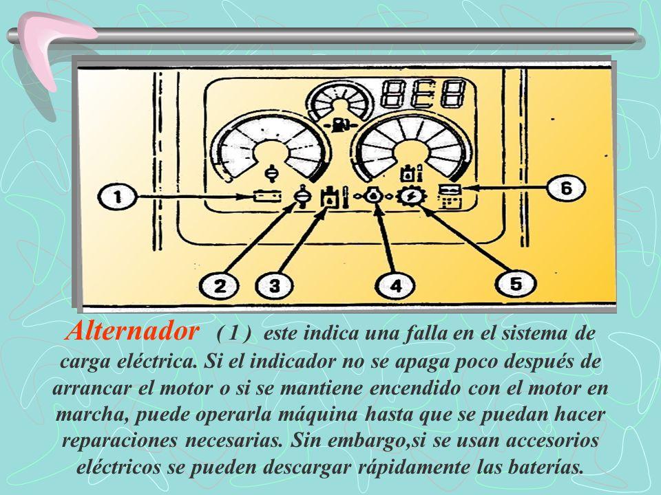 Control electrónico ( 5 ) este indicador se enciende cuando hay un problema electrónico.