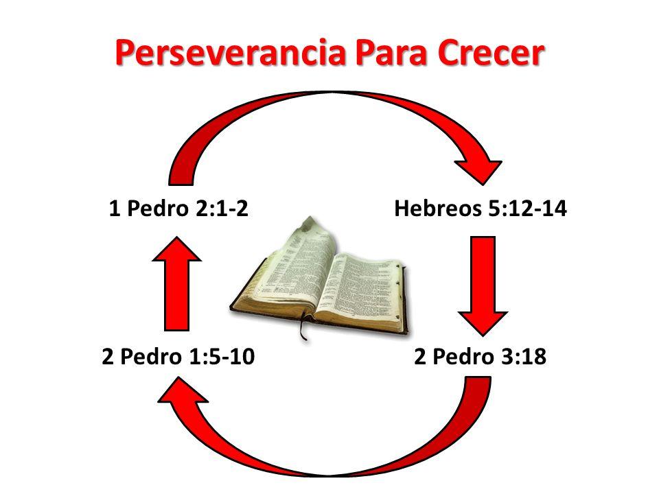 Perseverancia Para Crecer 1 Pedro 2:1-2 2 Pedro 1:5-10 Hebreos 5:12-14 2 Pedro 3:18