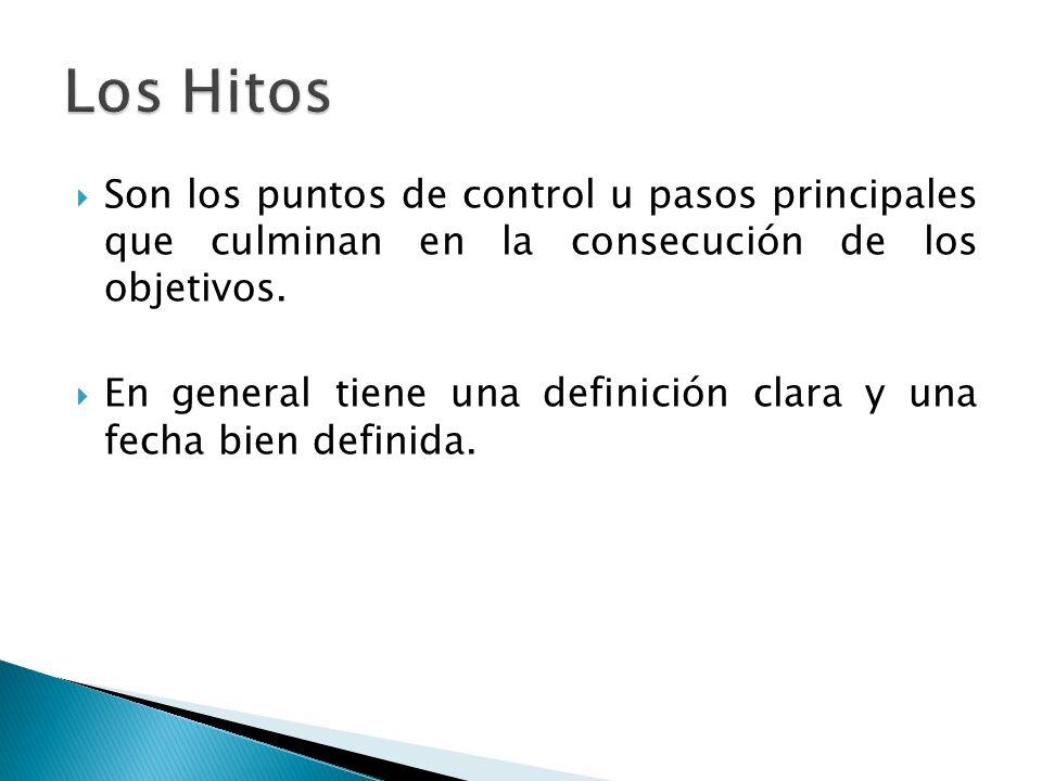 Son los puntos de control u pasos principales que culminan en la consecución de los objetivos. En general tiene una definición clara y una fecha bien