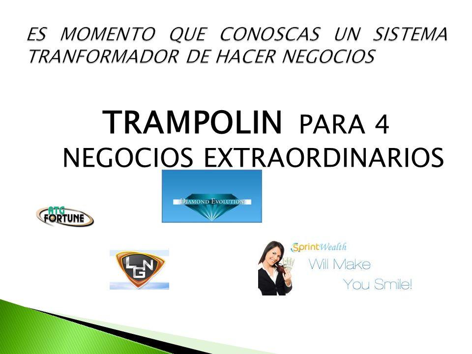 TRAMPOLIN PARA 4 NEGOCIOS EXTRAORDINARIOS