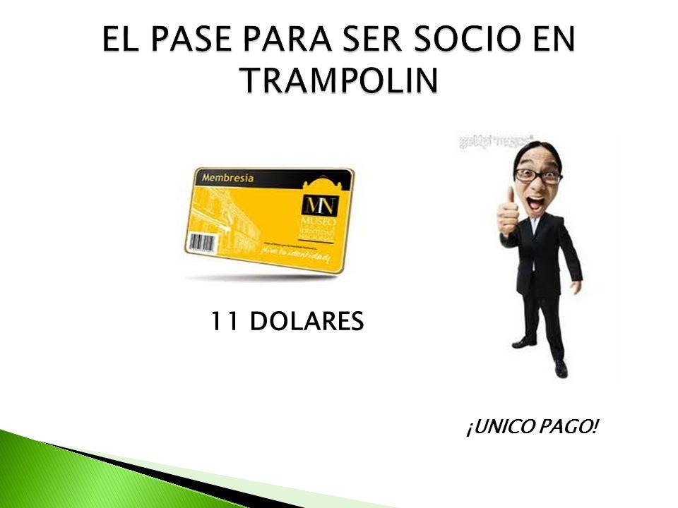 11 DOLARES ¡UNICO PAGO!