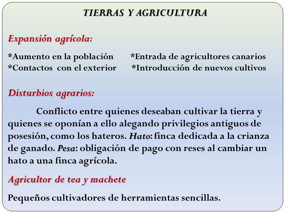 TIERRAS Y AGRICULTURA Expansión agrícola: *Aumento en la población *Entrada de agricultores canarios *Contactos con el exterior *Introducción de nuevo