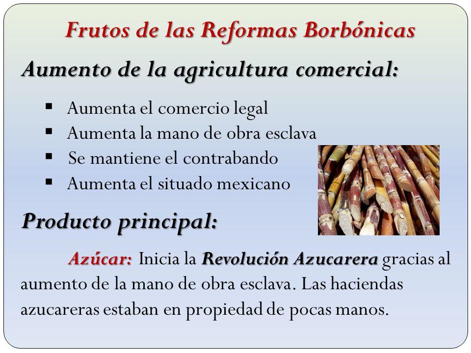 Frutos de las Reformas Borbónicas Aumento de la agricultura comercial: Aumenta el comercio legal Aumenta la mano de obra esclava Se mantiene el contra
