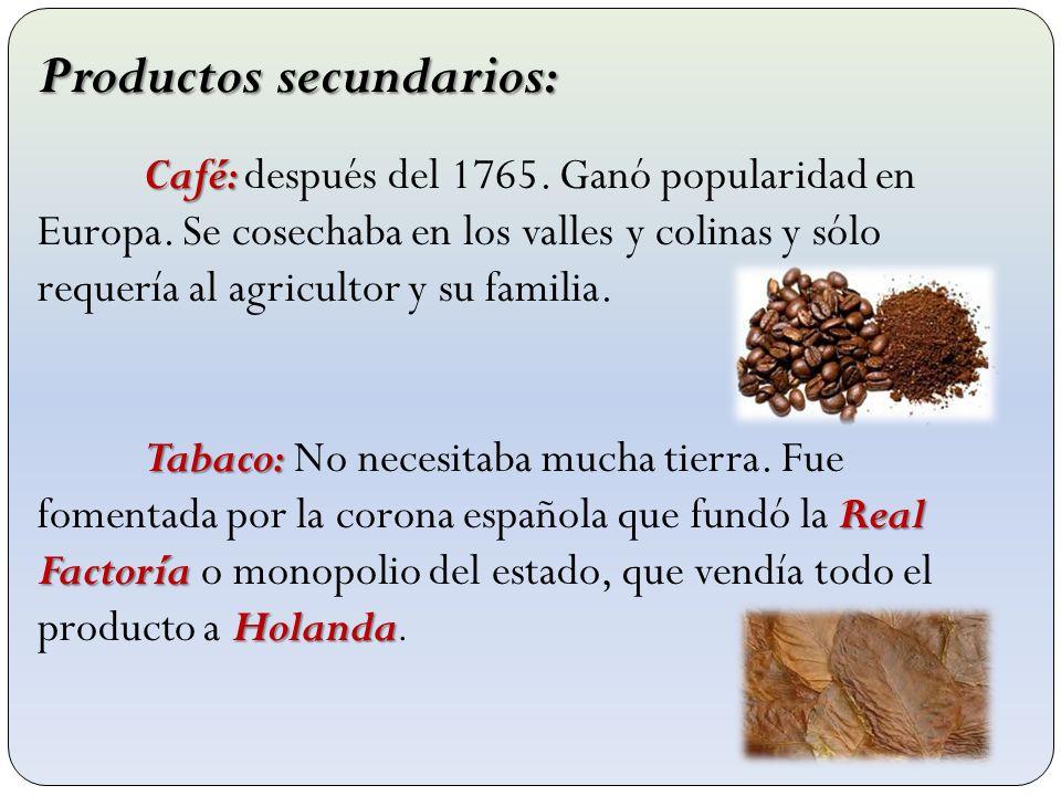 Productos secundarios: Café: Café: después del 1765. Ganó popularidad en Europa. Se cosechaba en los valles y colinas y sólo requería al agricultor y