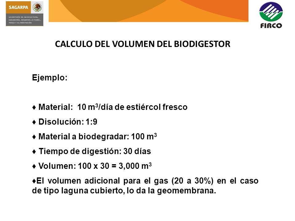 CALCULO DEL VOLUMEN DEL BIODIGESTOR Ejemplo: Material: 10 m 3 /día de estiércol fresco Disolución: 1:9 Material a biodegradar: 100 m 3 Tiempo de diges