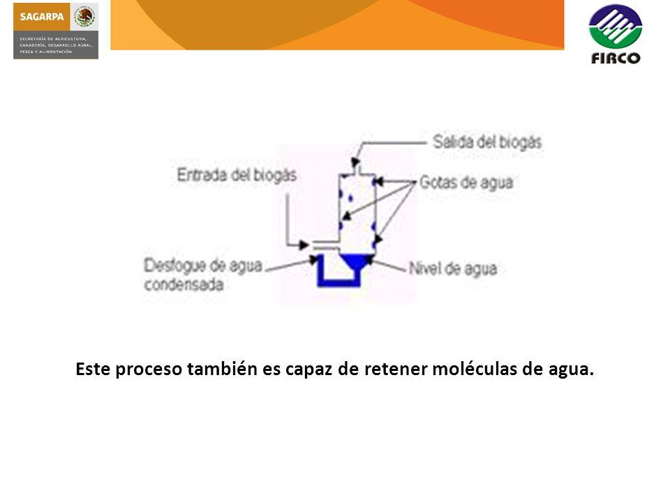 Este proceso también es capaz de retener moléculas de agua.