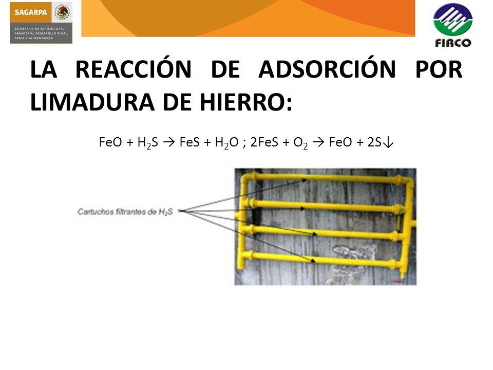 LA REACCIÓN DE ADSORCIÓN POR LIMADURA DE HIERRO: FeO + H 2 S FeS + H 2 O ; 2FeS + O 2 FeO + 2S