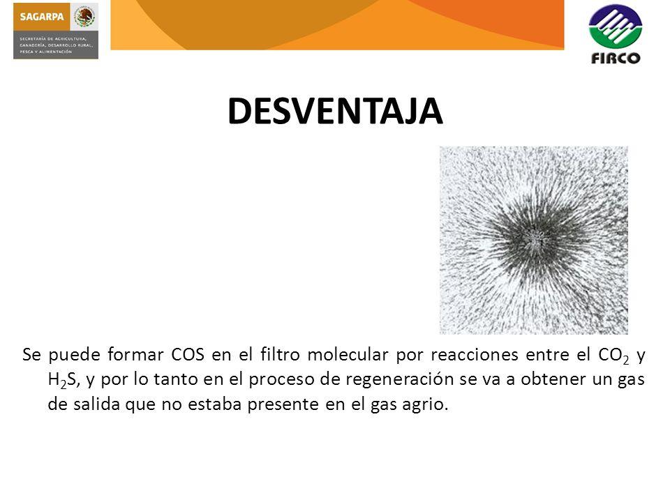 DESVENTAJA Se puede formar COS en el filtro molecular por reacciones entre el CO 2 y H 2 S, y por lo tanto en el proceso de regeneración se va a obten