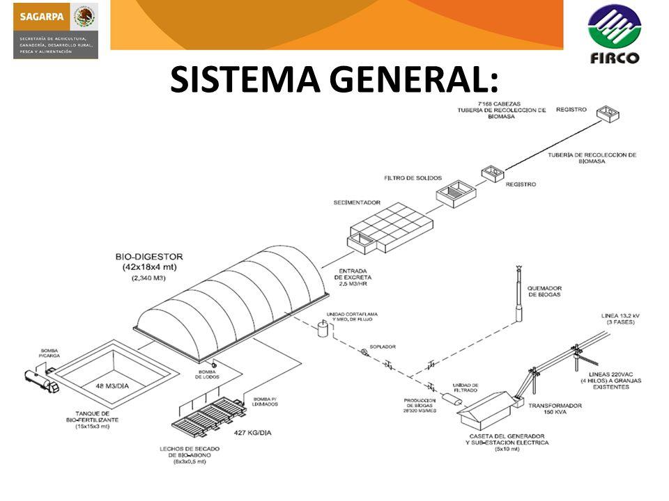 SISTEMA GENERAL:
