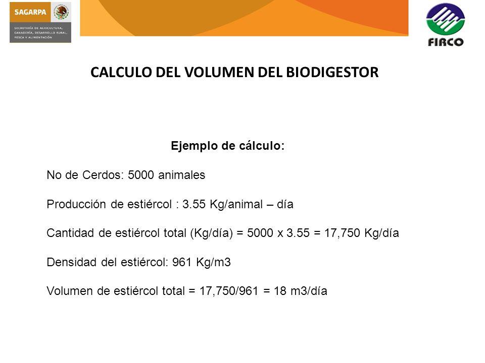 CALCULO DEL VOLUMEN DEL BIODIGESTOR Ejemplo de cálculo: No de Cerdos: 5000 animales Producción de estiércol : 3.55 Kg/animal – día Cantidad de estiérc