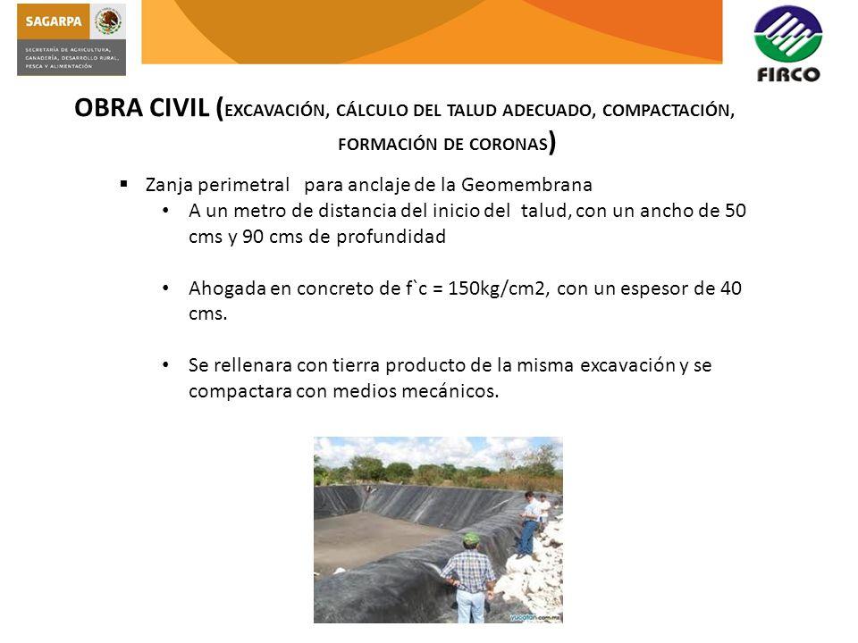 OBRA CIVIL ( EXCAVACIÓN, CÁLCULO DEL TALUD ADECUADO, COMPACTACIÓN, FORMACIÓN DE CORONAS ) Zanja perimetral para anclaje de la Geomembrana A un metro d