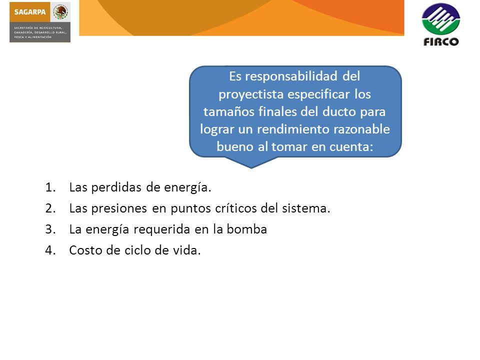 1.Las perdidas de energía. 2.Las presiones en puntos críticos del sistema. 3.La energía requerida en la bomba 4.Costo de ciclo de vida. Es responsabil