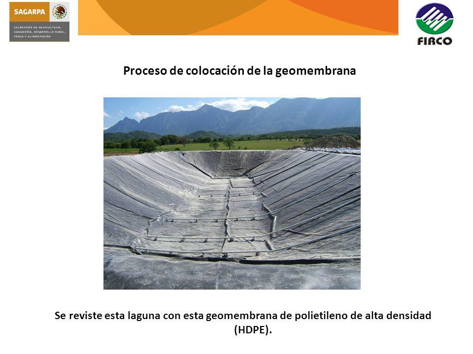 Se reviste esta laguna con esta geomembrana de polietileno de alta densidad (HDPE).