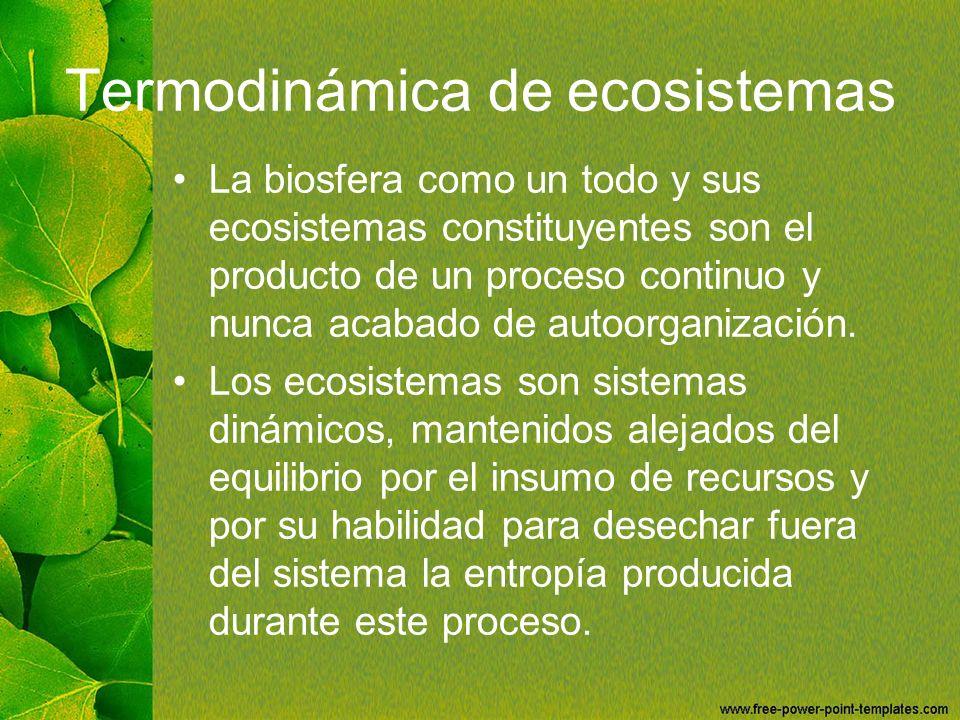 Termodinámica de ecosistemas La biosfera como un todo y sus ecosistemas constituyentes son el producto de un proceso continuo y nunca acabado de autoo