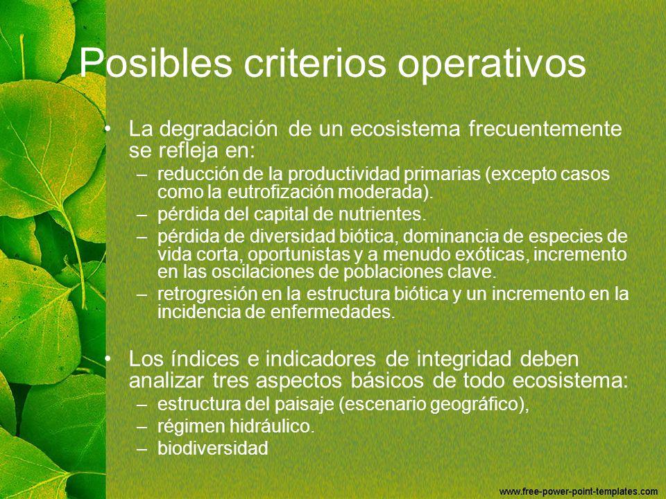 Posibles criterios operativos La degradación de un ecosistema frecuentemente se refleja en: –reducción de la productividad primarias (excepto casos co