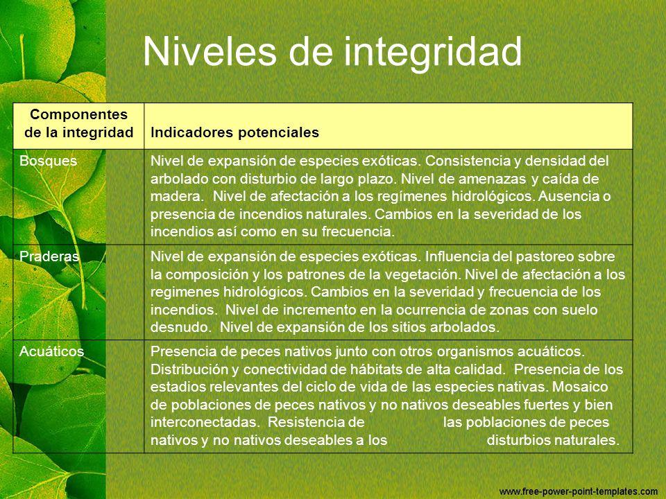 Niveles de integridad Componentes de la integridadIndicadores potenciales BosquesNivel de expansión de especies exóticas. Consistencia y densidad del