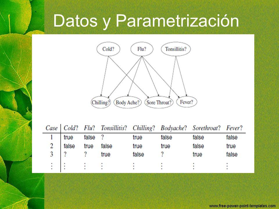 Datos y Parametrización