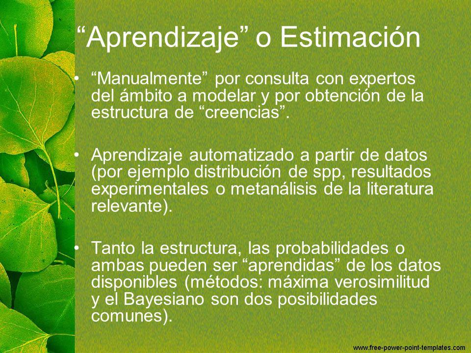 Aprendizaje o Estimación Manualmente por consulta con expertos del ámbito a modelar y por obtención de la estructura de creencias. Aprendizaje automat