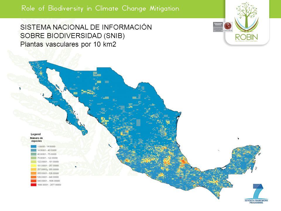 SISTEMA NACIONAL DE INFORMACIÓN SOBRE BIODIVERSIDAD (SNIB) Plantas vasculares por 10 km2