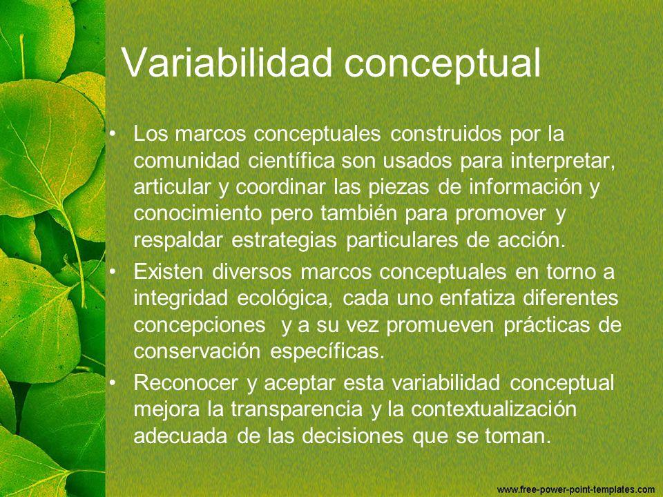 Variabilidad conceptual Los marcos conceptuales construidos por la comunidad científica son usados para interpretar, articular y coordinar las piezas