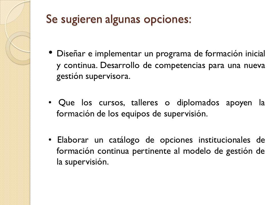 Se sugieren algunas opciones: Se sugieren algunas opciones: Diseñar e implementar un programa de formación inicial y continua. Desarrollo de competenc