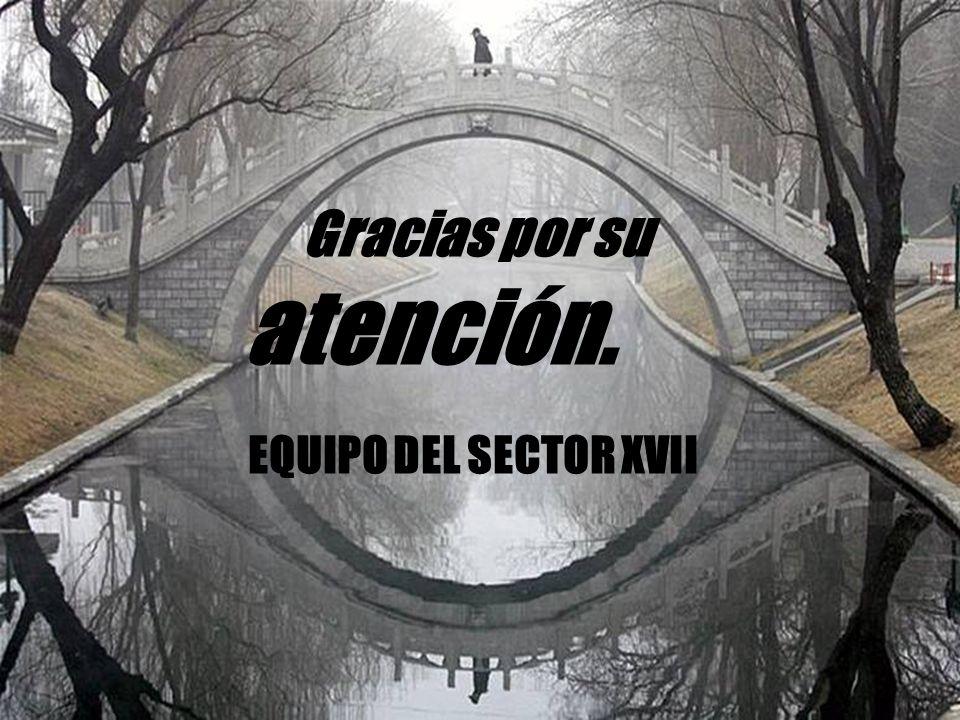 Gracias por su atención. EQUIPO DEL SECTOR XVII
