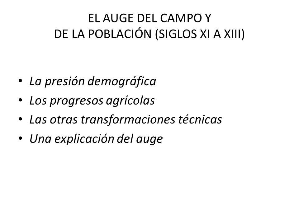 EL AUGE DEL CAMPO Y DE LA POBLACIÓN (SIGLOS XI A XIII) La presión demográfica Los progresos agrícolas Las otras transformaciones técnicas Una explicac