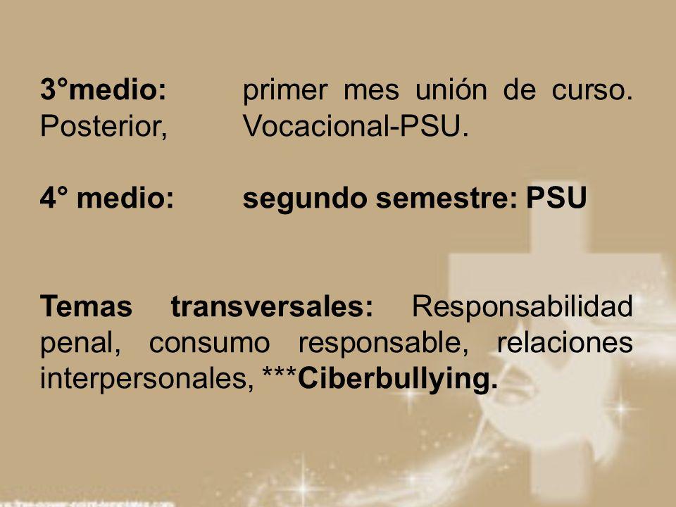 3°medio: primer mes unión de curso. Posterior, Vocacional-PSU. 4° medio: segundo semestre: PSU Temas transversales: Responsabilidad penal, consumo res