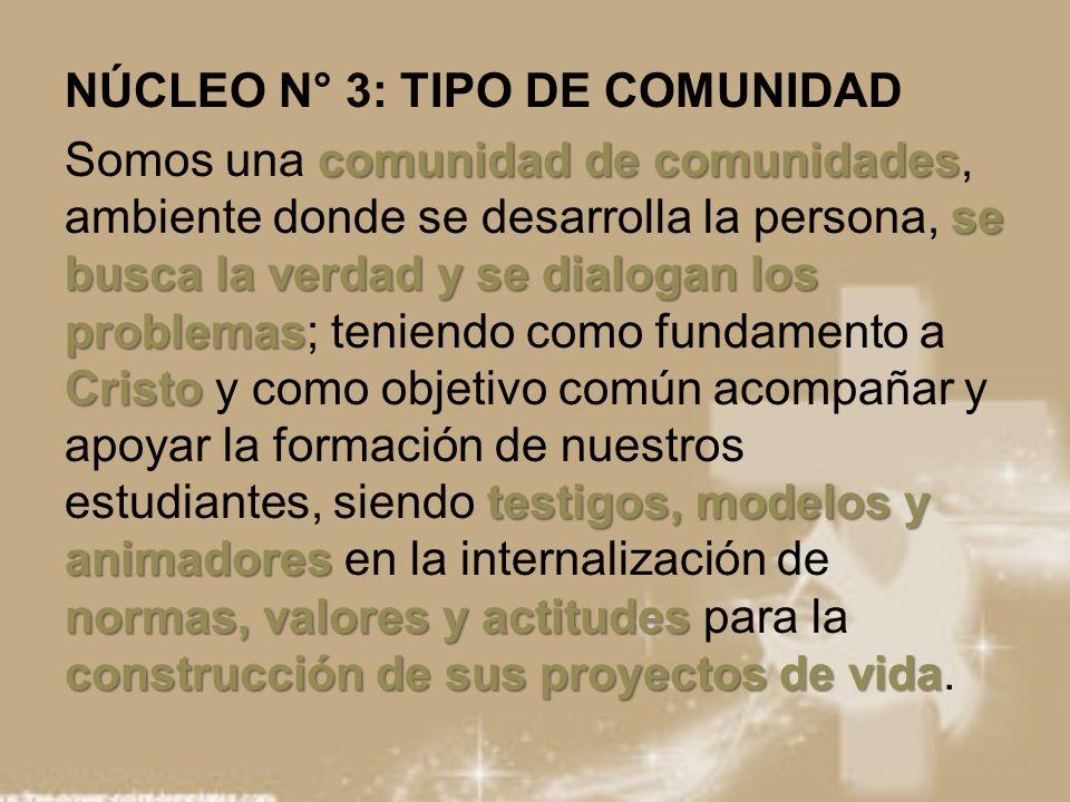 NÚCLEO N° 3: TIPO DE COMUNIDAD comunidad de comunidades se busca la verdad y se dialogan los problemas Cristo testigos, modelos y animadores normas, v