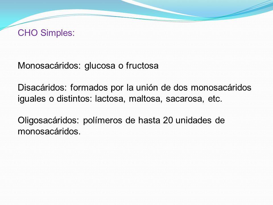CHO Simples: Monosacáridos: glucosa o fructosa Disacáridos: formados por la unión de dos monosacáridos iguales o distintos: lactosa, maltosa, sacarosa