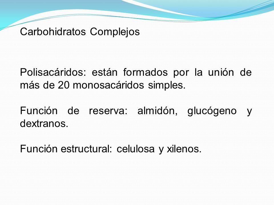 Carbohidratos Complejos Polisacáridos: están formados por la unión de más de 20 monosacáridos simples. Función de reserva: almidón, glucógeno y dextra