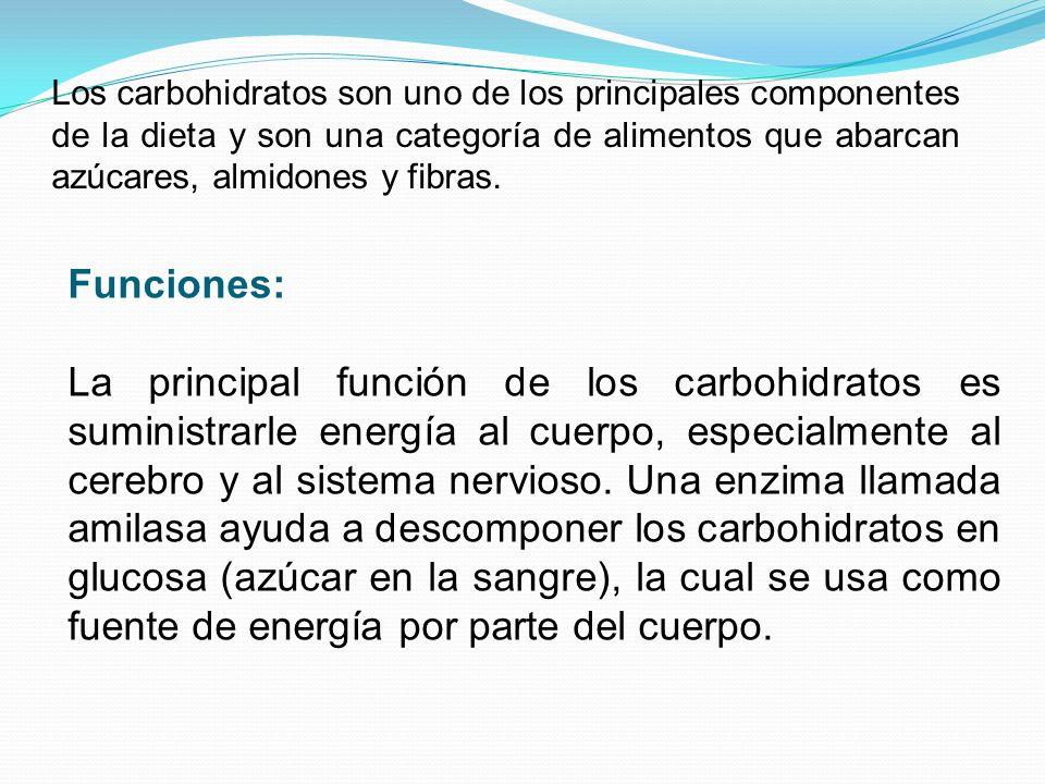 Carbohidratos Complejos Polisacáridos: están formados por la unión de más de 20 monosacáridos simples.