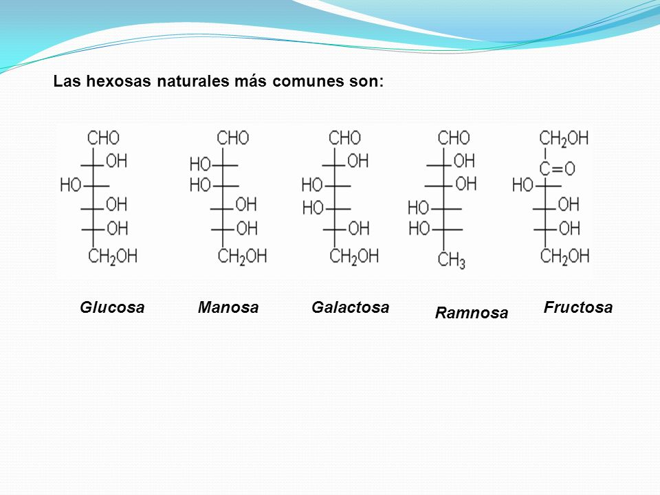 Las hexosas naturales más comunes son: GlucosaManosa Ramnosa FructosaGalactosa