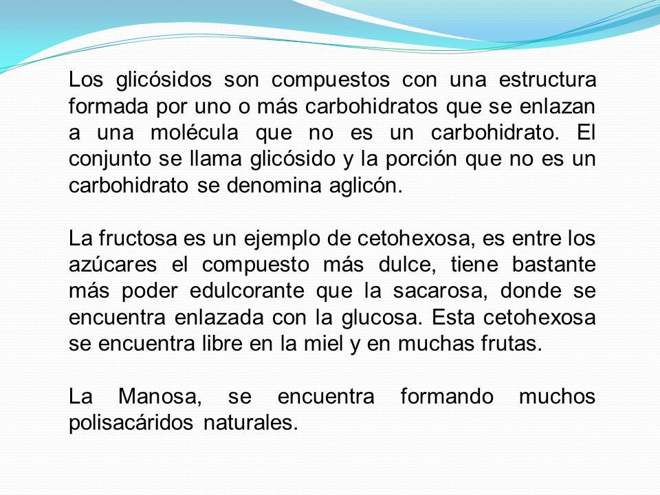 CLASIFICACIÓN DE LOS CARBOHIDRATOS MonosacáridosGlucosa, fructosa, galactosa DisacáridosSacarosa, lactosa, maltosa PoliolesIsomaltosa, sorbitol, maltitol OligosacáridosMaltodextrina, fructo-oligosacáridos PolisacáridosAlmidón: Amilasa, amilopectina Polisacáridos Sin almidón: Celulosa, pectinas, hidrocoloides Todos los carbohidratos están formados por unidades estructurales de azúcares, que se pueden clasificar según el número de unidades de azúcar que se combinen en una molécula.