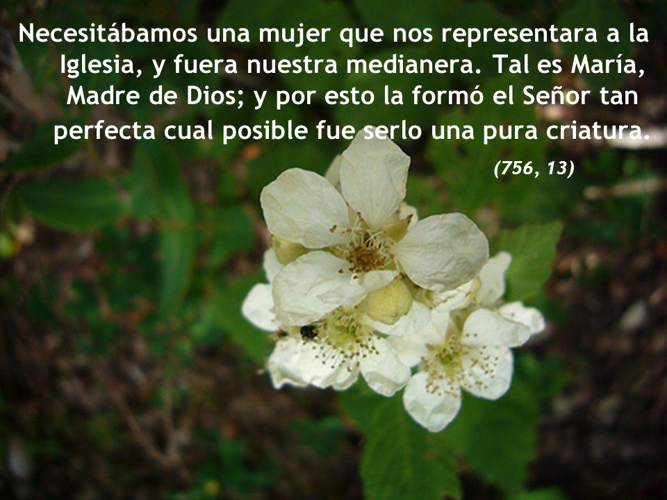 María es el tipo más acabado para representarnos la Iglesia Santa. (756, 12)