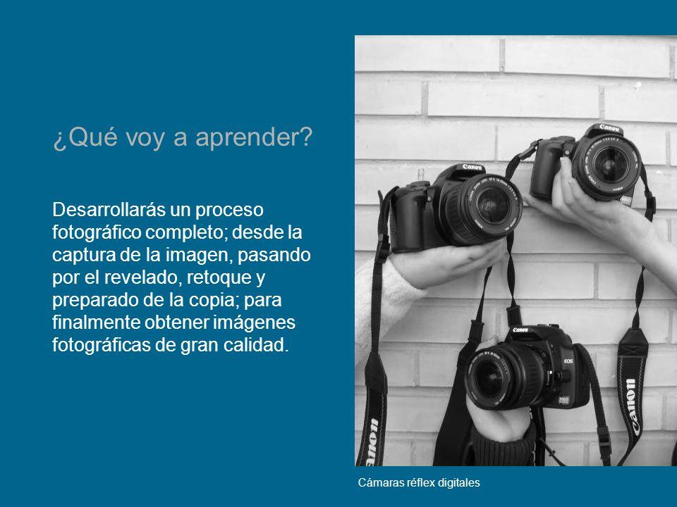 Manejarás cámaras fotográficas profesionales (Réflex 35 mm, medio formato y gran formato).