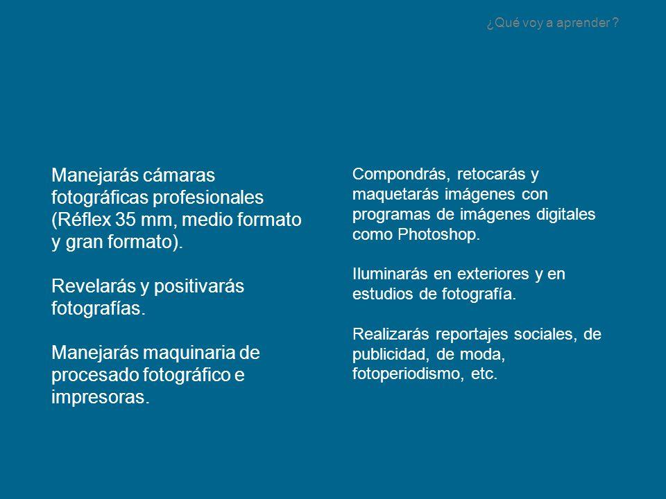 Superando una serie de módulos profesionales relacionados con la fotografía; con prácticas reales y una base teórica.
