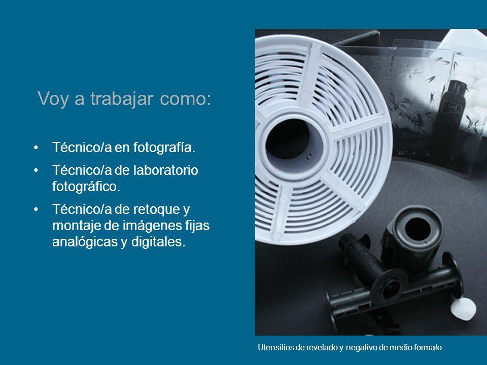 Edición digital de imágenes Voy a trabajar como: Reproducción y macrofotografía