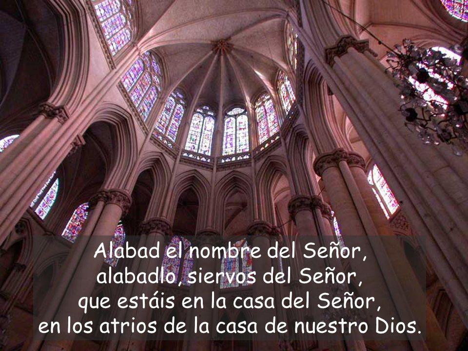 Alabad el nombre del Señor, alabadlo, siervos del Señor, que estáis en la casa del Señor, en los atrios de la casa de nuestro Dios.