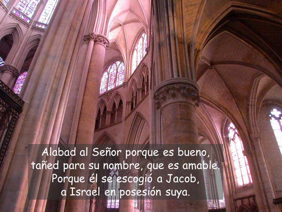 Alabad al Señor porque es bueno, tañed para su nombre, que es amable.