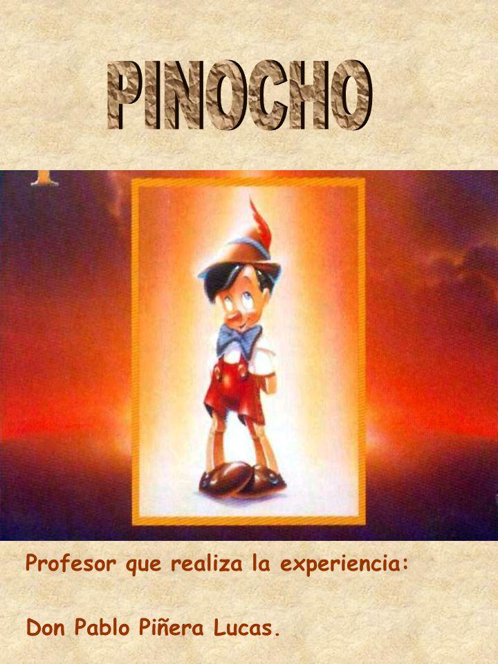 El hada para transformar a Pinocho en un niño utilizó una…
