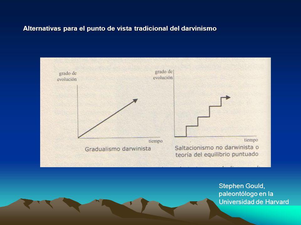 Alternativas para el punto de vista tradicional del darvinismo Stephen Gould, paleontólogo en la Universidad de Harvard
