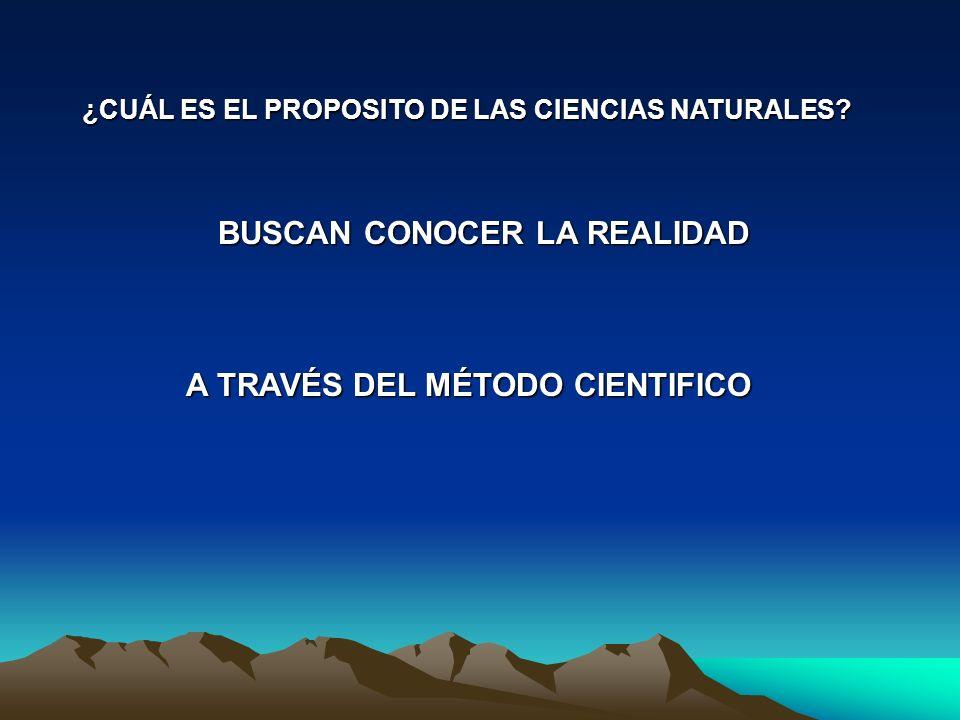 Como se presenta en los libros de texto: Tomado de: Biología III Medio de Santillana 2001