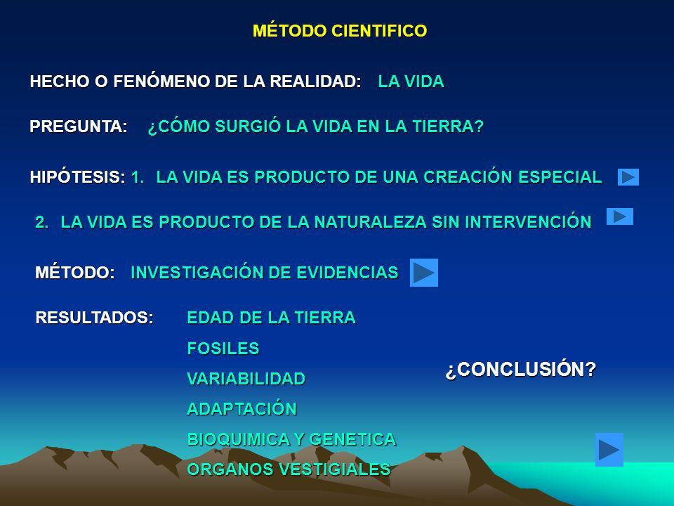 Conclusión: 1.