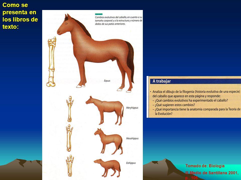 Como se presenta en los libros de texto: Tomado de: Biología III Medio de Santillana 2001, p., 105